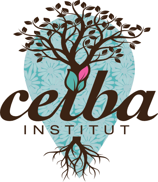 Ceiba Institut à Mont de Marsan